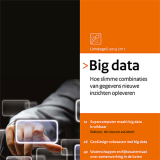 Strategische verkenningen: Big data