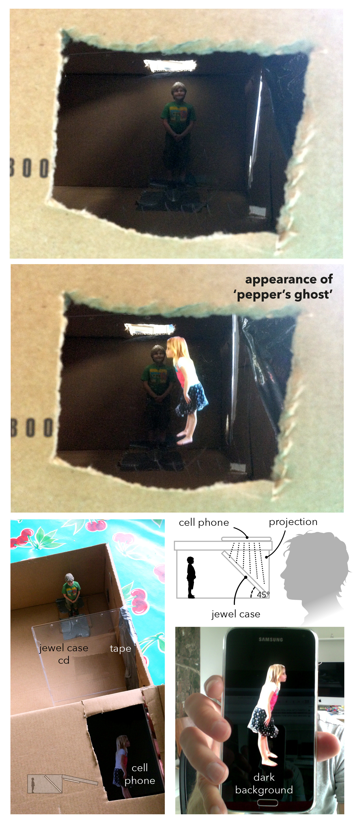 VIZ_Peppers_Ghost_infographic
